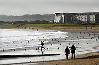 Walks on Redbarn Beach