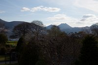 Fossa_Lodge_Killarney