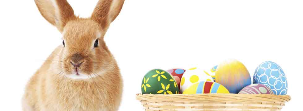 EASTER 2019 SPECIAL OFFERS